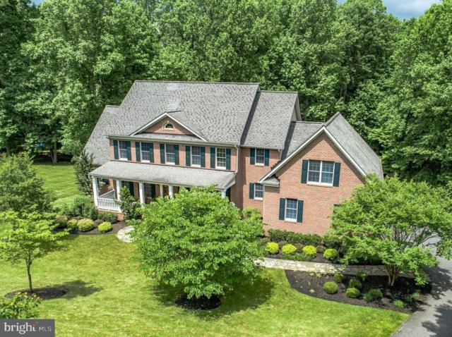 12318 Fawn River Way, ELLICOTT CITY, MD 21042 (#1001733446) :: Remax Preferred | Scott Kompa Group