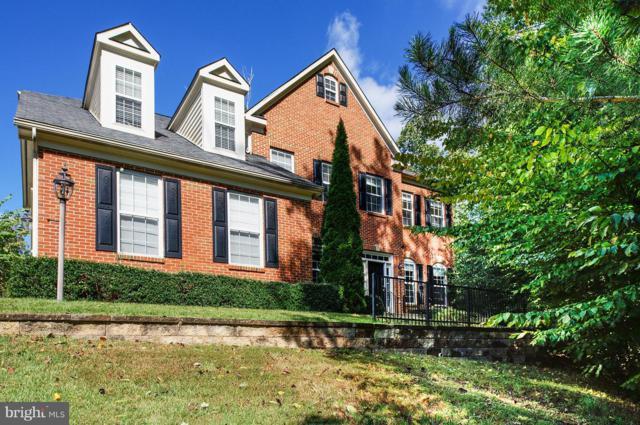 6655 Passage Creek Lane, MANASSAS, VA 20112 (#1001750612) :: Colgan Real Estate