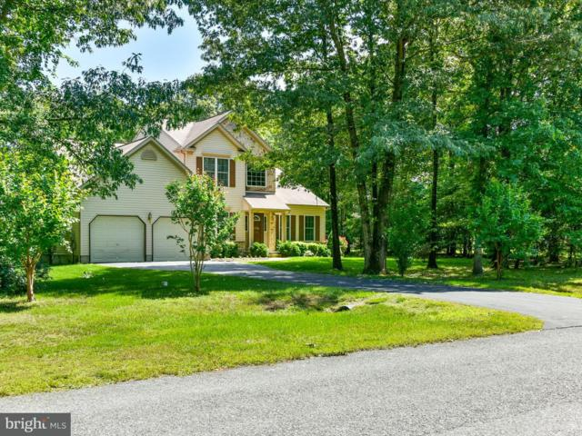 2 Hollyhock Drive, GREENWOOD, DE 19950 (#1001780378) :: Atlantic Shores Realty