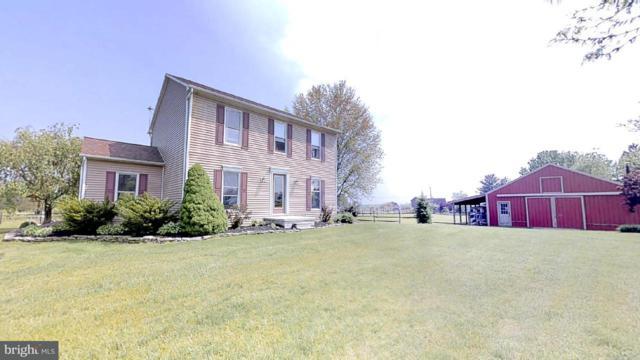 575 Hilltown Road, GETTYSBURG, PA 17325 (#1001795022) :: The Joy Daniels Real Estate Group