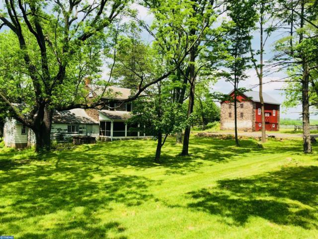 6356 Durham Road, PIPERSVILLE, PA 18947 (#1001808040) :: Colgan Real Estate