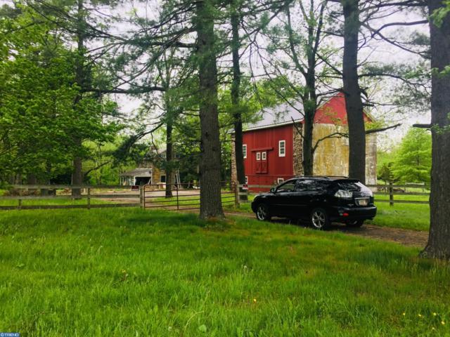6356 Durham Road, PIPERSVILLE, PA 18947 (#1001808190) :: Colgan Real Estate