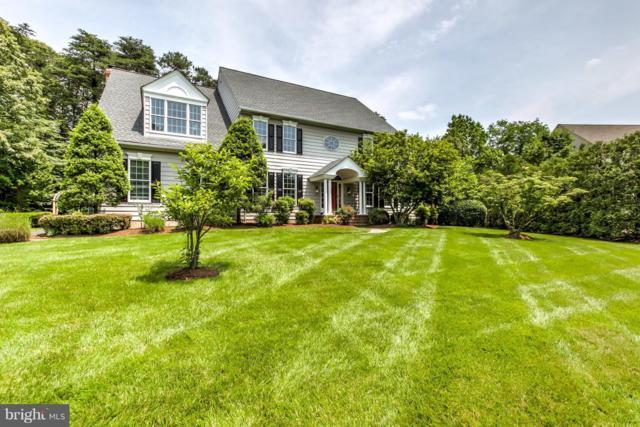304 Carlyn Drive, SEVERNA PARK, MD 21146 (#1001840260) :: Colgan Real Estate