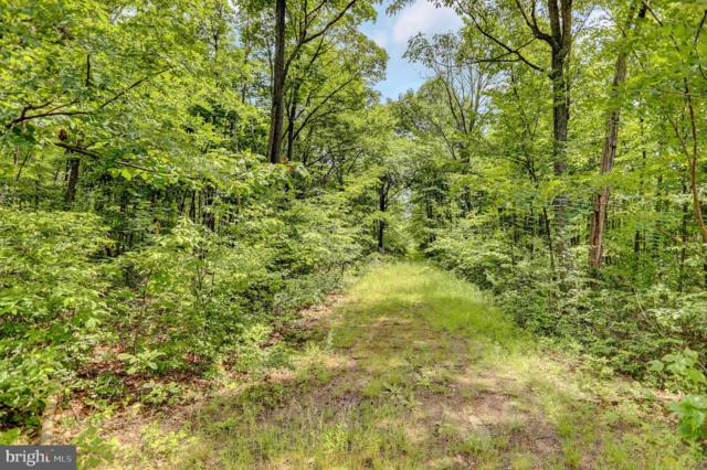 Lot 33 Todd Pass, JAMES CREEK, PA 16657 (#1001890826) :: The Heather Neidlinger Team With Berkshire Hathaway HomeServices Homesale Realty