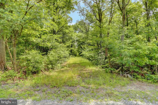 Lot 32 Todd Pass, JAMES CREEK, PA 16657 (#1001890866) :: The Heather Neidlinger Team With Berkshire Hathaway HomeServices Homesale Realty