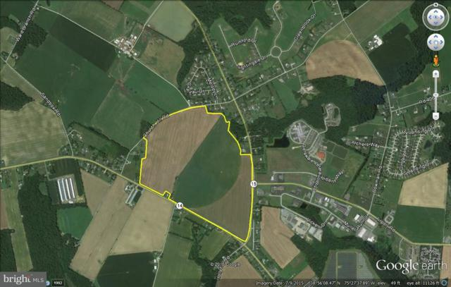 182 Acres Milford-Harrington Highway, MILFORD, DE 19963 (#1001891584) :: Barrows and Associates