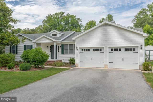 31431 Melloy Court, LEWES, DE 19958 (#1001899642) :: The Windrow Group