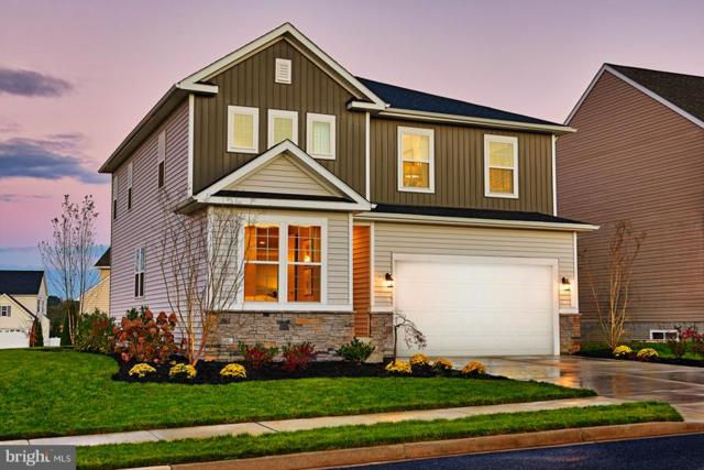Wayland Manor Drive - Pearl, CULPEPER, VA 22701 (#1001923606) :: ExecuHome Realty