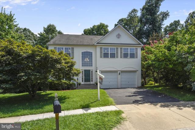 12902 Summit Ridge Terrace, GERMANTOWN, MD 20874 (#1001929114) :: Colgan Real Estate