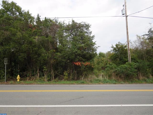 135 Monocacy Creek Road, BIRDSBORO, PA 19508 (#1001937064) :: Dougherty Group