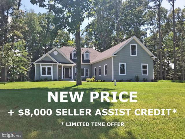 29283 River Rock Way, MILTON, DE 19968 (#1001940540) :: The Windrow Group