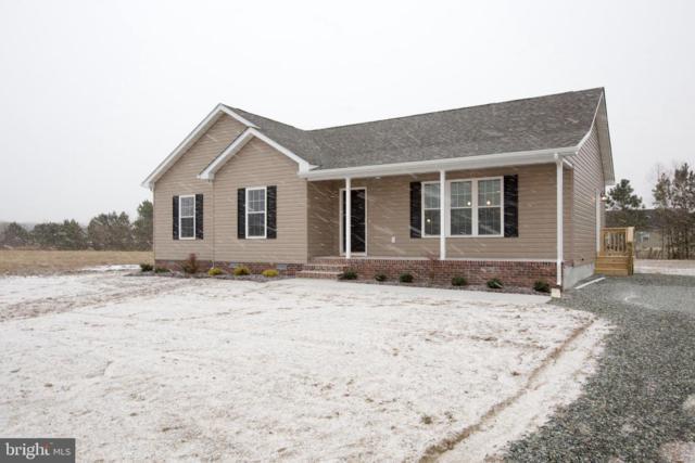 29999 Indian Cottage Road, PRINCESS ANNE, MD 21853 (#1001940968) :: Colgan Real Estate