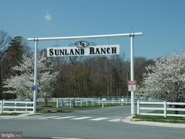 13217 Sunland Drive, MILTON, DE 19968 (#1001961850) :: Brandon Brittingham's Team