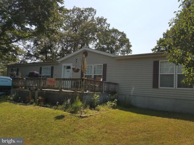 25980 S Oak St. Lot 157, MILLSBORO, DE 19966 (#1001994308) :: The Allison Stine Team