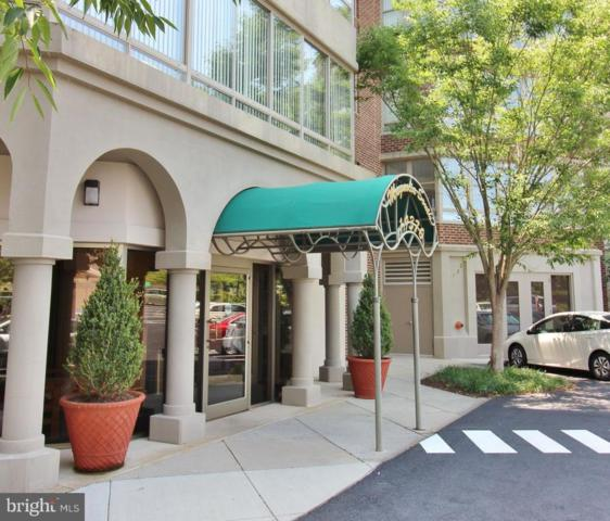 19370 Magnolia Grove Square #108, LEESBURG, VA 20176 (#1002000926) :: SURE Sales Group
