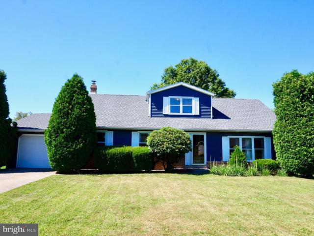 185 James Street, ELIZABETHVILLE, PA 17023 (#1002013680) :: Colgan Real Estate