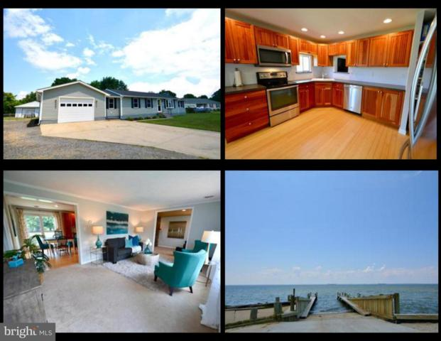 141 N Lake Drive, STEVENSVILLE, MD 21666 (#1002032018) :: Colgan Real Estate