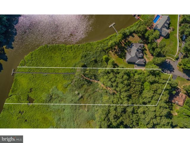 308 Lot 17 Tanglewood Drive, LEWES, DE 19958 (#1002069806) :: The Windrow Group