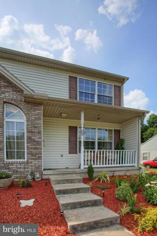 47 Petersburg Lane, DUNCANNON, PA 17020 (#1002074694) :: The Craig Hartranft Team, Berkshire Hathaway Homesale Realty