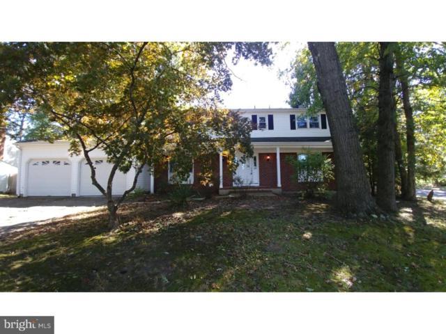 674 Paxson Avenue, TRENTON, NJ 08619 (MLS #1002077002) :: The Dekanski Home Selling Team