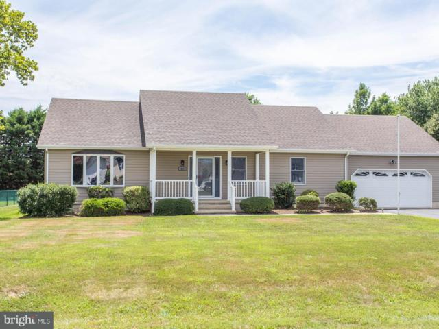 30072 Overbrook Drive, MILTON, DE 19968 (#1002082190) :: The Windrow Group