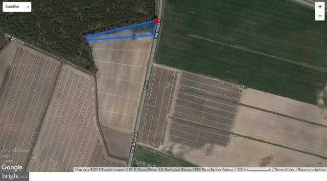 Lot 1 Old Stage Road, DELMAR, DE 19940 (#1002084222) :: RE/MAX Coast and Country