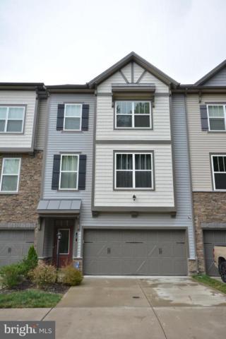 17 Forge Mill Road, STAFFORD, VA 22554 (#1002093636) :: Colgan Real Estate