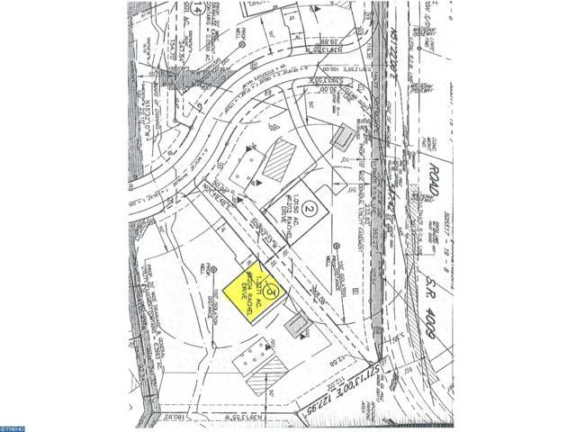 6224 Rachael Drive Lot 3, SLATINGTON, PA 18080 (#1002123612) :: Bob Lucido Team of Keller Williams Integrity