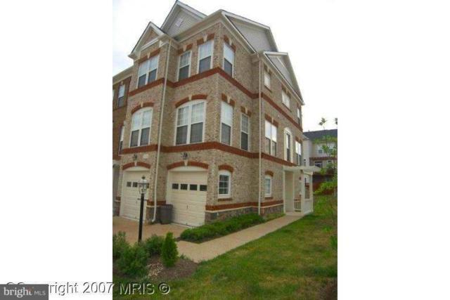 21929 Halburton Terrace, BROADLANDS, VA 20148 (#1002146536) :: Circadian Realty Group