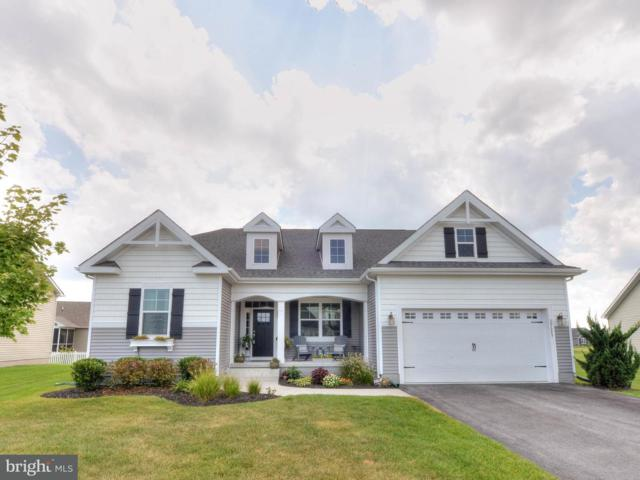 29689 Riverstone Drive, MILTON, DE 19968 (#1002163486) :: The Windrow Group