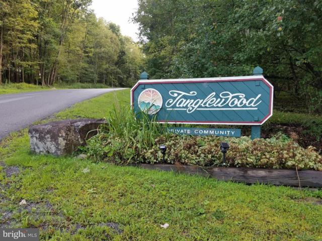 587 Tanglewood Drive, OAKLAND, MD 21550 (#1002164682) :: The Maryland Group of Long & Foster