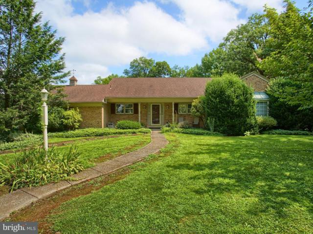 20 W Lawn Circle, WORMLEYSBURG, PA 17043 (#1002165328) :: Benchmark Real Estate Team of KW Keystone Realty