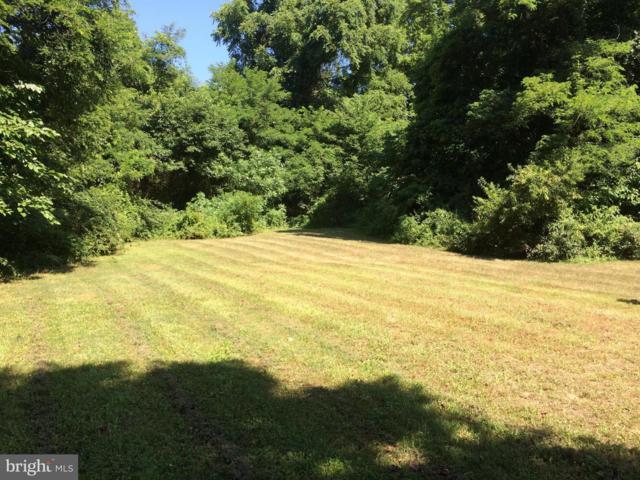 11335 Needam Road, WORTON, MD 21678 (#1002243428) :: Eng Garcia Grant & Co.