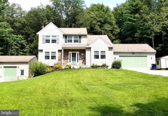 3029 Buchanan Valley Road, ORRTANNA, PA 17353 (#1002252056) :: Colgan Real Estate