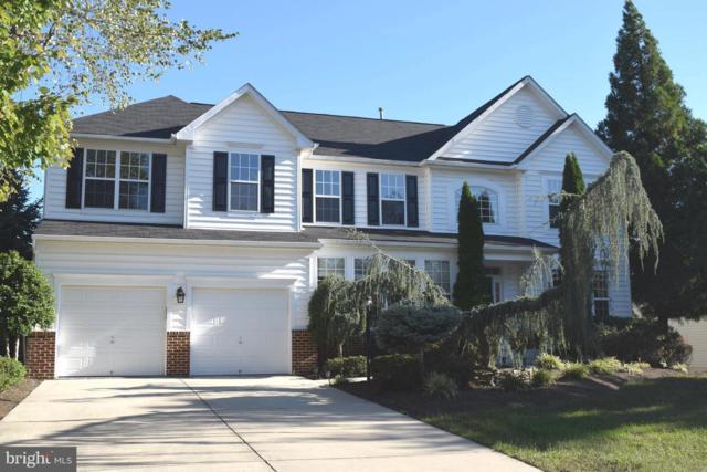 25804 Spring Farm Circle, CHANTILLY, VA 20152 (#1002264868) :: Colgan Real Estate