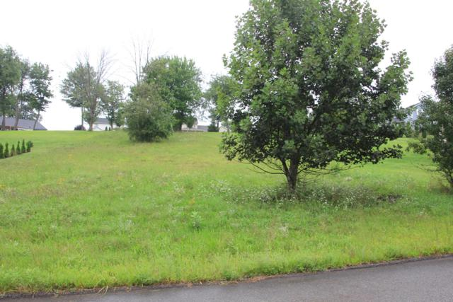 LOT 46 Wilt Boulevard, MILLERSBURG, PA 17061 (#1002277074) :: The Heather Neidlinger Team With Berkshire Hathaway HomeServices Homesale Realty