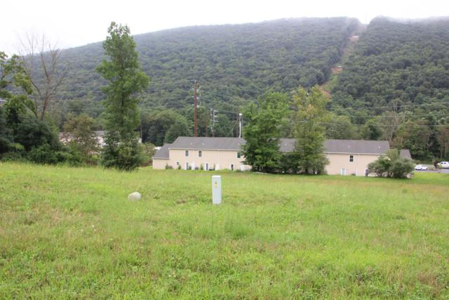 LOT 40 Wilt Boulevard, MILLERSBURG, PA 17061 (#1002278588) :: Shamrock Realty Group, Inc