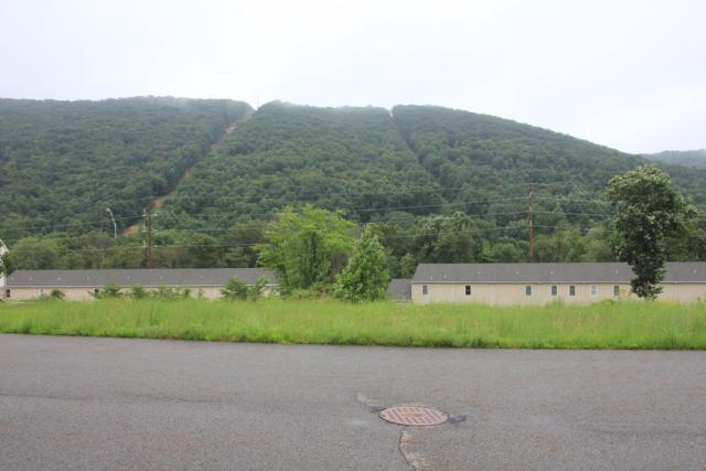 LOT 43 Wilt Boulevard, MILLERSBURG, PA 17061 (#1002278718) :: Shamrock Realty Group, Inc