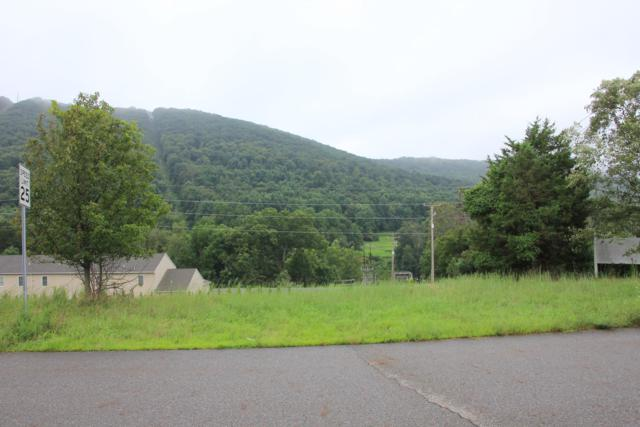 LOT 25 Edward Drive, MILLERSBURG, PA 17061 (#1002278730) :: Shamrock Realty Group, Inc