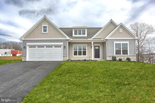 809 Briar Rose Avenue, LEBANON, PA 17046 (#1002285974) :: The Heather Neidlinger Team With Berkshire Hathaway HomeServices Homesale Realty