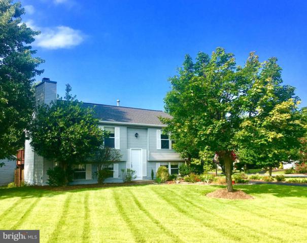107 Sue Ann Court, STERLING, VA 20164 (#1002287500) :: Colgan Real Estate