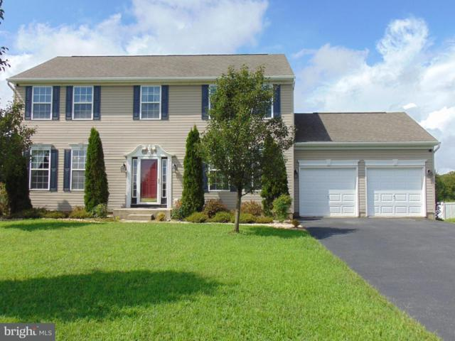 7 Big Pond Drive, MILFORD, DE 19963 (#1002288288) :: Remax Preferred | Scott Kompa Group