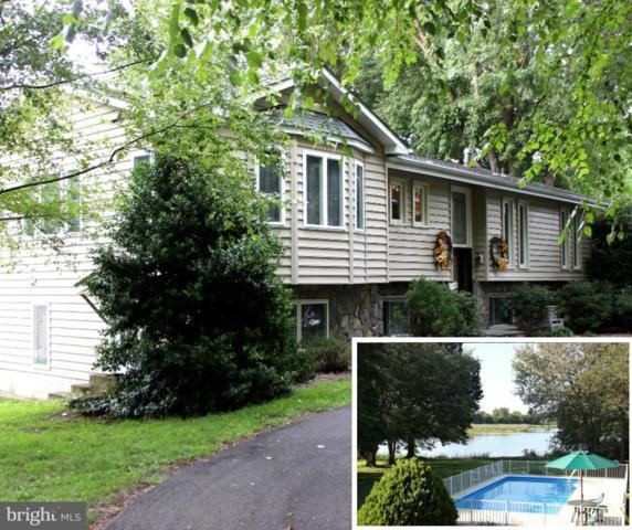304 Calvert Road, STEVENSVILLE, MD 21666 (#1002302298) :: Colgan Real Estate