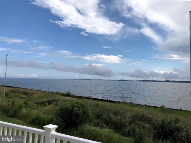 34770 W Harbor Drive #5672, MILLSBORO, DE 19966 (#1002306232) :: RE/MAX Coast and Country