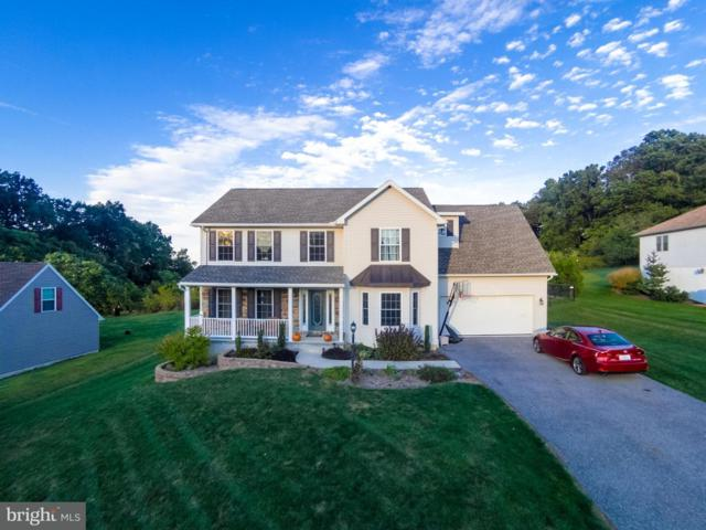 45 Dayton Court, WINDSOR, PA 17366 (#1002308260) :: The Joy Daniels Real Estate Group