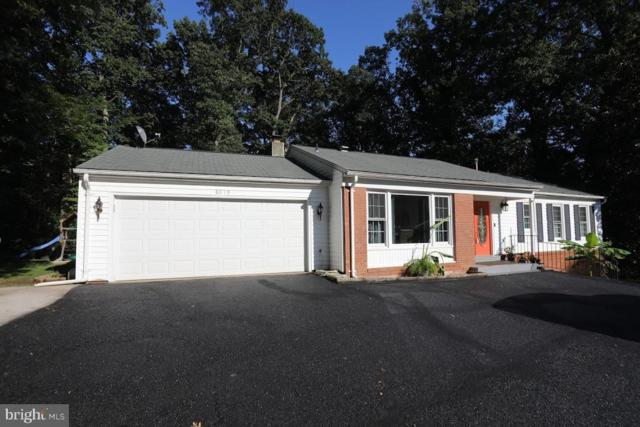 8019 Lake Pleasant Drive, SPRINGFIELD, VA 22153 (#1002336334) :: Century 21 New Millennium