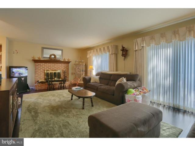 902 Clover Drive, READING, PA 19610 (#1002350820) :: REMAX Horizons