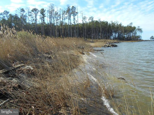 Hoopers Neck Road, TAYLORS ISLAND, MD 21669 (#1002351486) :: RE/MAX Coast and Country