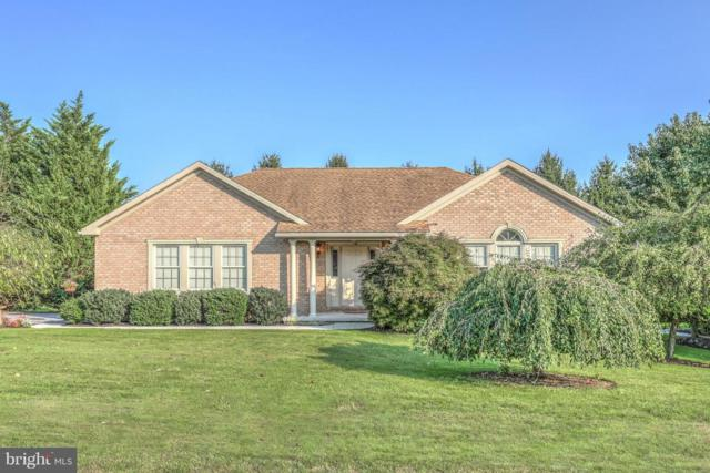 520 Monocacy Trail, SPRING GROVE, PA 17362 (#1002356796) :: Benchmark Real Estate Team of KW Keystone Realty