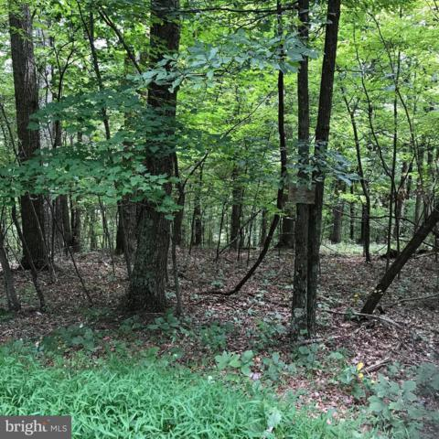LOT 14 Rosebud Lane, GREAT CACAPON, WV 25422 (#1002363048) :: Colgan Real Estate